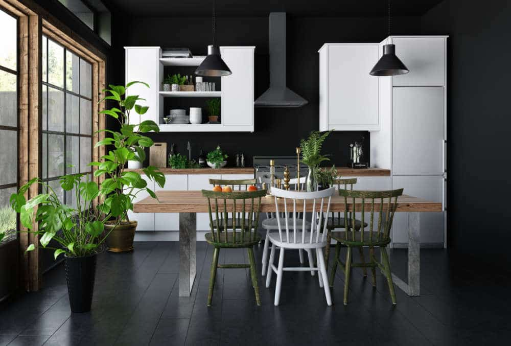 small gray and black kitchen with plants on counters for decoration